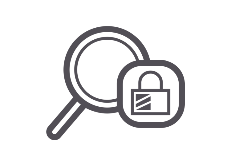 Security Simulation Icon